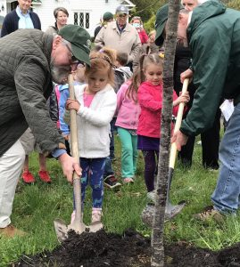 Two little girls help two adults did a hole and plant a tree