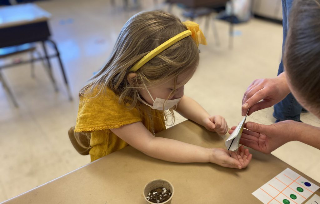 A small girl with a yellow shirt and hair band as well as a light mas holds her hands open as someone pours seeds into them. A small cup of dirt is on her desk.